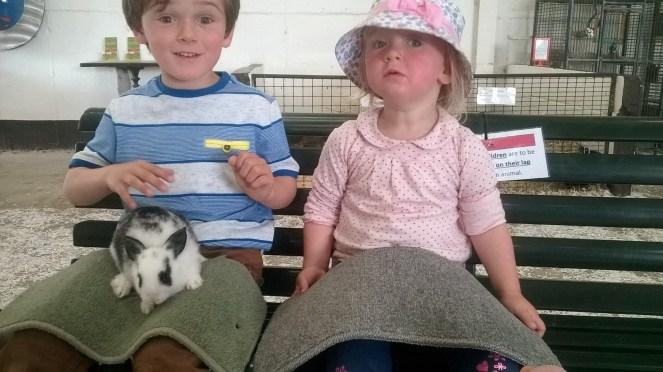 Baby Bunnies Kia Ora