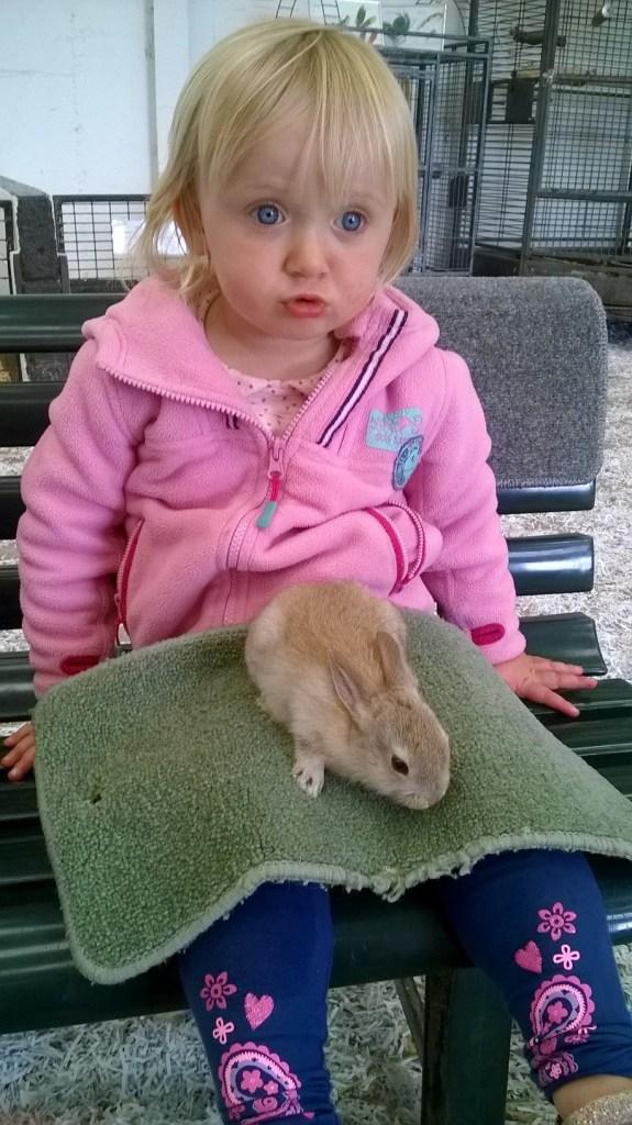 Kia Ora Bunny Rabbits