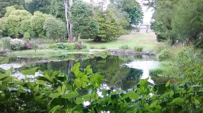 Kilmacurragh Gardens 13