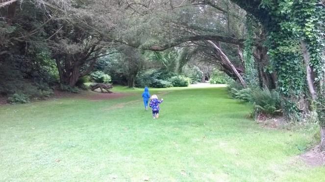 Kilmacurragh Gardens 3