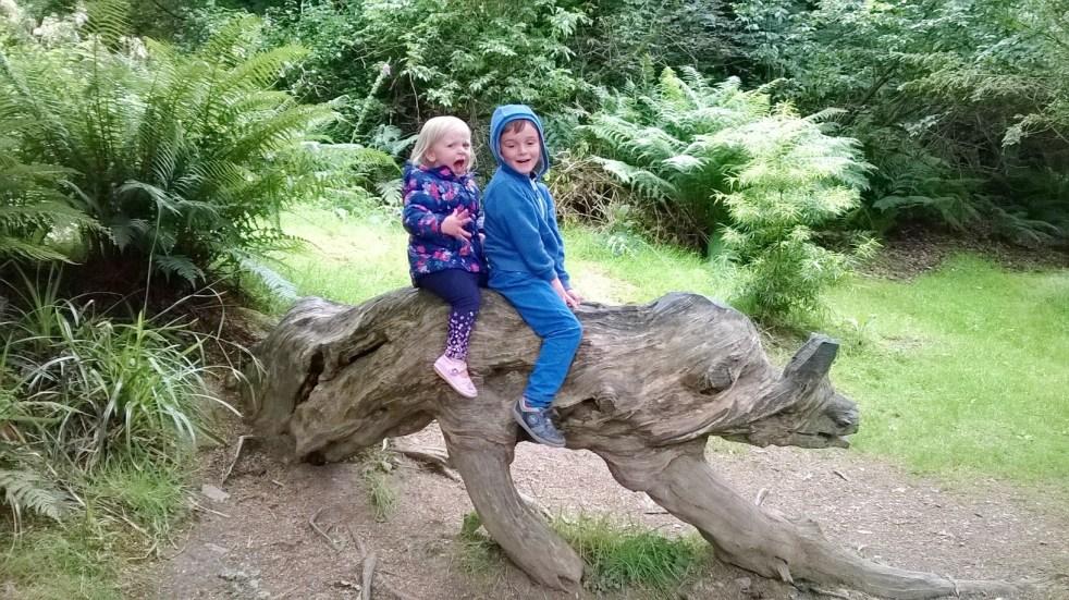 Kilmacurragh Gardens 4