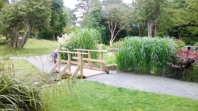 Kilmacurragh Gardens 5