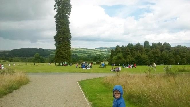 Kilmacurragh Gardens 7