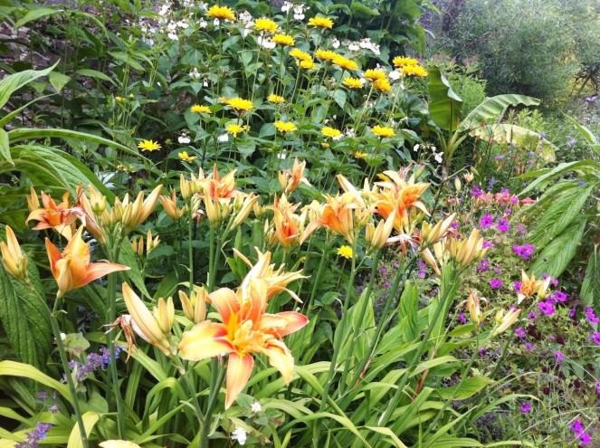 Kilmacurragh Gardens