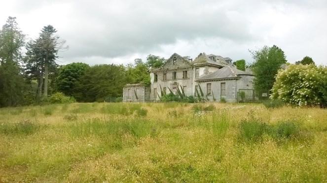 Kilmacurragh Gardens 9