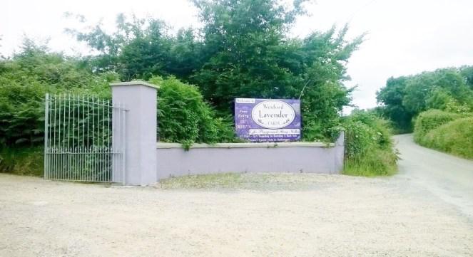 Wexford Lavender Farm Entrance