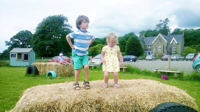 Wexford Lavender Farm Playground