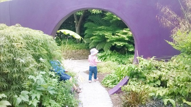 National Garden Centre Kilquade 19