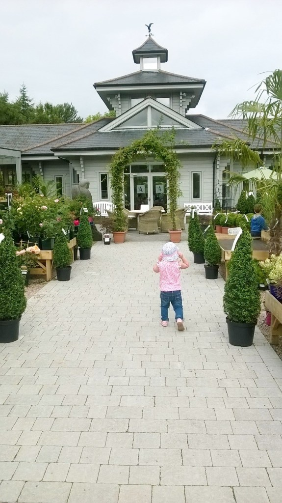 National Garden Centre Kilquade 9