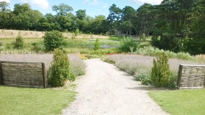 Cabinteely Park 9